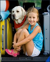cerenia - for helping dogs avoid mostion sickness when traveling in the car